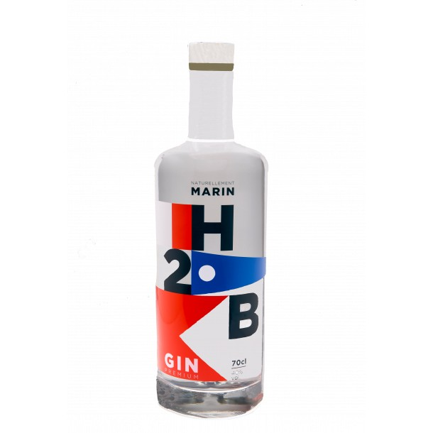 H2B Gin