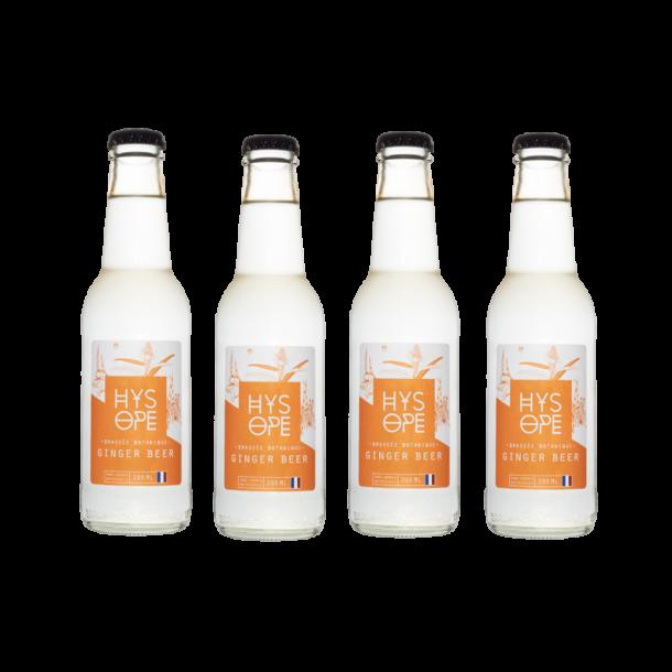 Pack 4 Hysope: Ginger beer