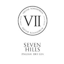 II Hills Gin